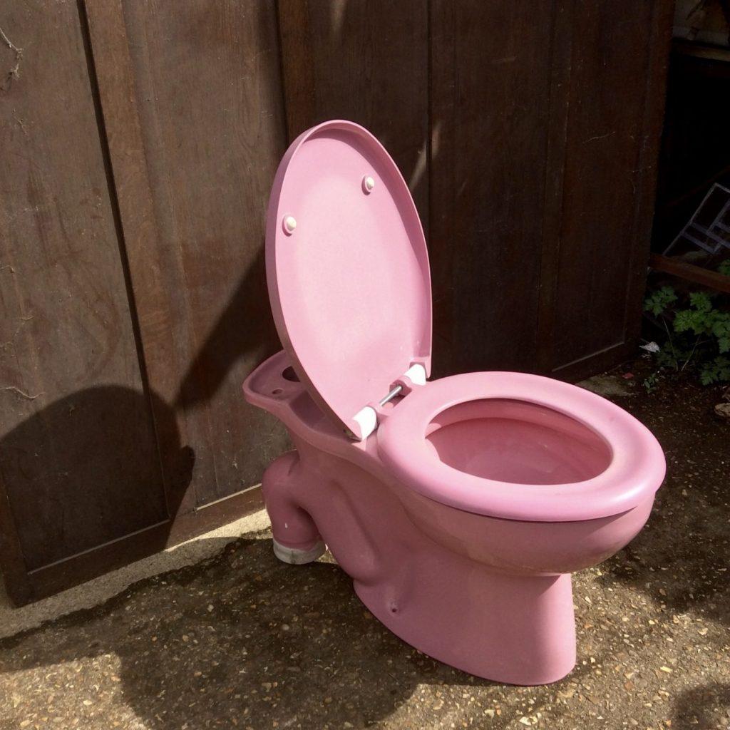THBPTS03 Toilet bidet and sink pink • Trevor Howsam Limited